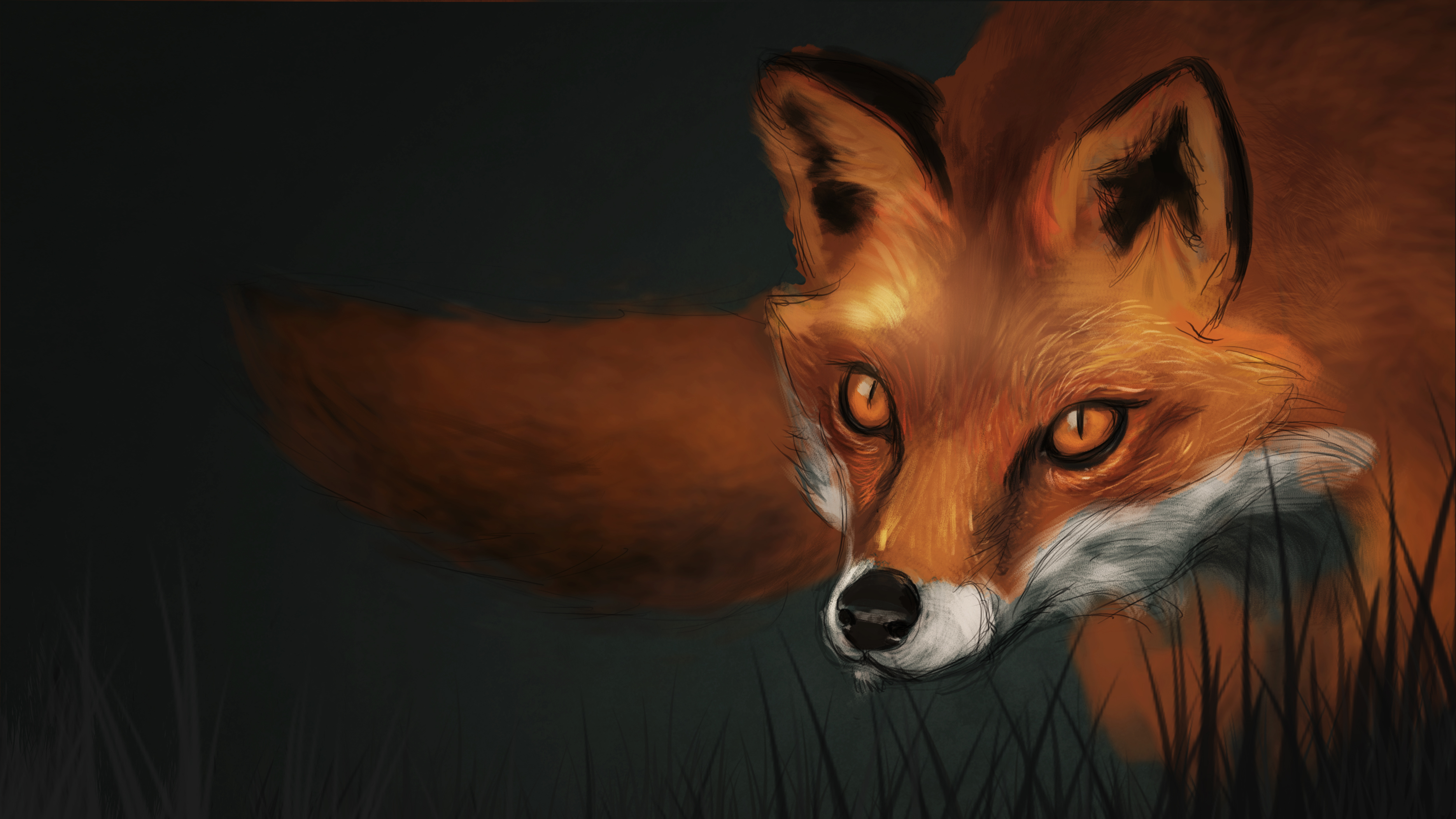 Fox_Study